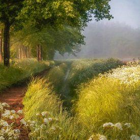 Lente in Holland van Lars van de Goor