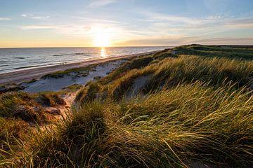 Sonnenuntergang über den Dünen von Matthias Nolde