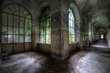 Hallway of the lunatic van Preciousdecay by Sandra