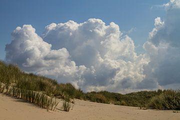 In de duinen van Irene Lommers