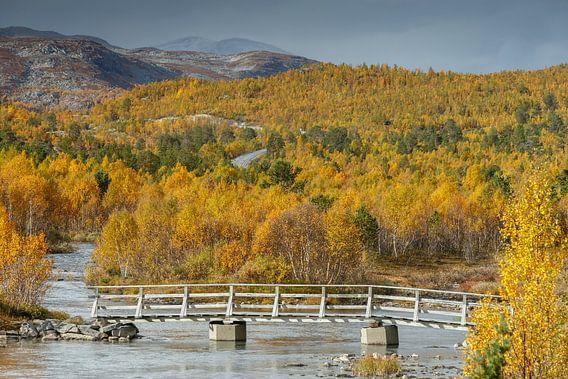 Herfst in Noorwegen van Menno Schaefer