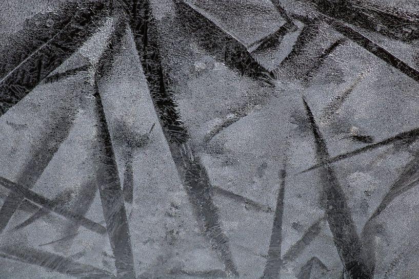 les fleurs de glace ou les étoiles de glace sur Wendy de Waal