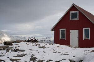 Wooden shack on a fjord at Sommeroya and Hillesoya in Northern Norway van