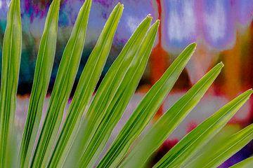 Palmblad tegen schilderachtige achtergrond