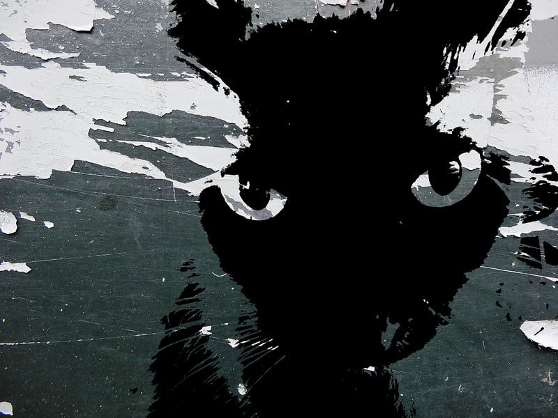 Kattenkunst - Storm 2 van MoArt (Maurice Heuts)