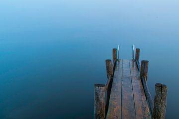 Zwemtrapje in de mist van Ingrid van Wageningen