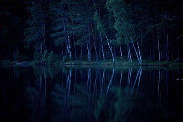 Réflexion nocturne