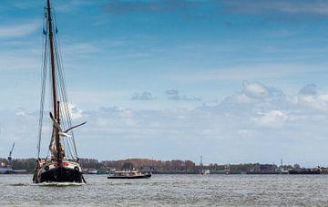 Zeilschip met meeuw