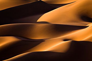 Licht und Schatten, Mohammadreza Momeni von 1x