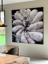 Kundenfoto: Blume aus Wolle von Riekus Reinders, als akustikbild