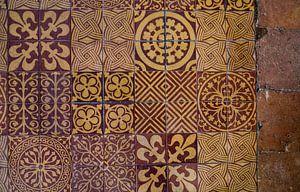 Fragment van middeleeuwse tegelvloer van Lies van den Berg