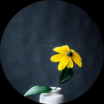 Foto print | gele bloem | modern | botanisch | bloemen | fotografie | lente van Jenneke Boeijink