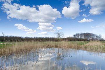 Niederländische Himmel von Mark Bolijn