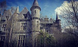 Castle van