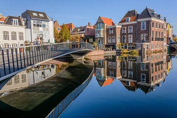Catherinabrug, Leiden