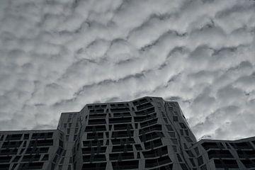 Calypso, Rotterdam von Michel van Kooten