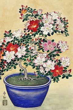 Blühende Azalee in einem blauen Topf, Ohara Koson (1920 - 1930) von Atelier Liesjes