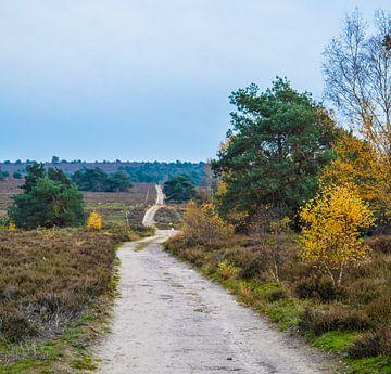 Endlose Straße durch die Heide. von Eline Slijkhuis