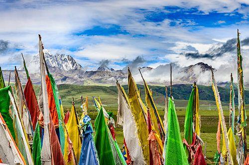 Tagong. Gebedsvlaggen, rollende vlaktes en de heilige berg Yala . sur