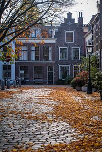 Herfst in Holland van