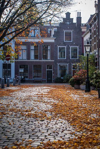 Herfst in Holland van BTF Fotografie