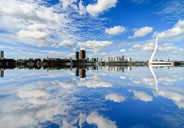 Rotterdam Erasmus van Lisa Kompier