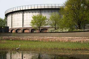 Reiher von Amsterdam im Park von Mees Zijlker