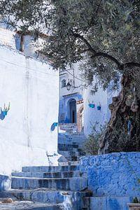 Doorkijkje in Chefchaouen, Marokko van