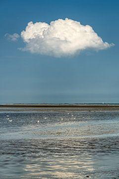 Nuage unique au-dessus de la mer des Wadden depuis la jetée de PaesensModdergat