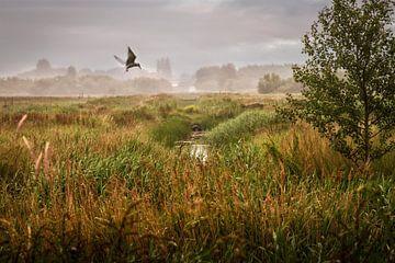 Landschap met vissende stern von Joey Hohage
