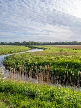 Kronkelend riviertje in omgeving Nijenburg bij Heiloo en Alkmaar van Ronald Smits