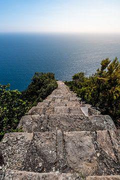 Endless Descent van Stefan Bauwens Photography