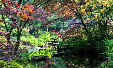 De Japanse tuin... van Bert - Photostreamkatwijk