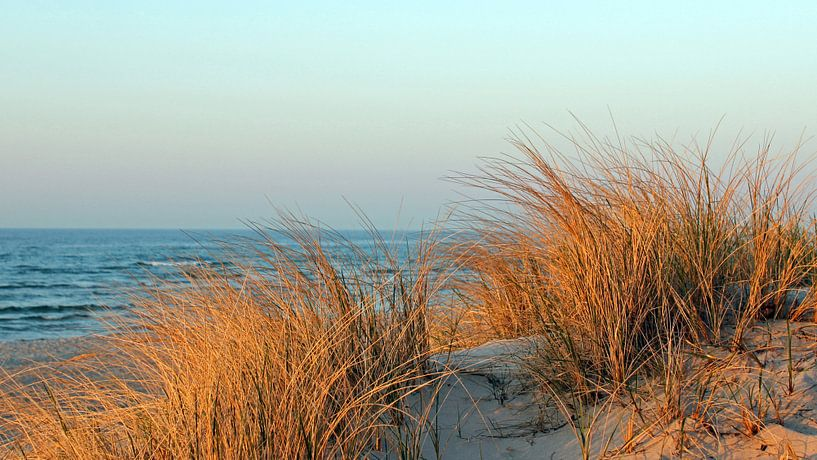Abendsonne im März von Ostsee Bilder