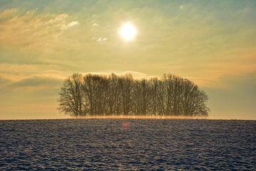 Winterstimmung von Claudia Evans