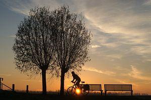 Fietser met opkomende zon in de polder.