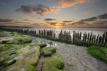 Sunset along the Wadden coast sur