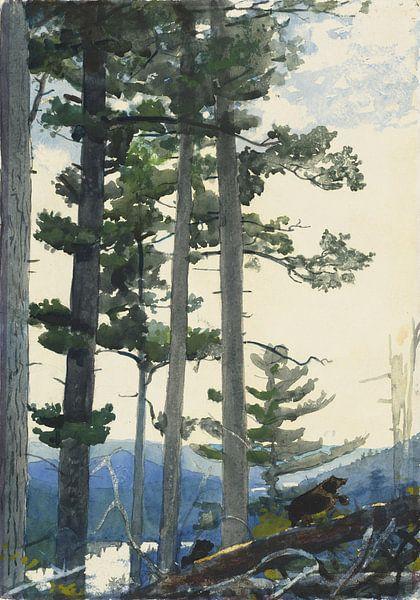 Winslow Homer-Oude Siedler von finemasterpiece