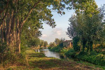 Szenischer Blick durch die Bäume von Ruud Morijn