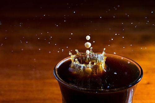 Koffiemelk van Dennis van de Water