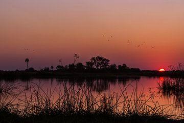 De zonsondergang van