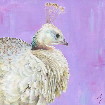 Witte Pauw van Amy Verhoeff