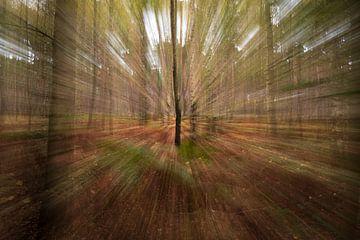 Wald in Bewegung von Peter Deschepper