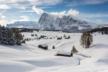 Winter on the Alpe di Siusi van Michael Valjak