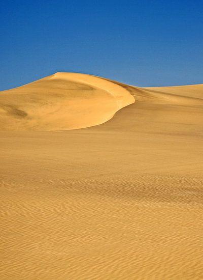 Namib woestijn nabij Swakopmund in Namibië 2 van Jan van Reij