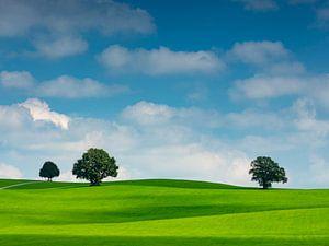 Wolkenstimmung mit Bäumen