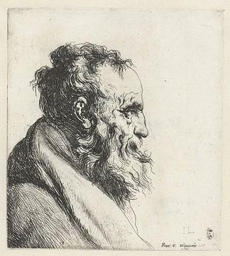 Büste eines alten Mannes mit Bart, Jan Lievens, 1635 - 1644