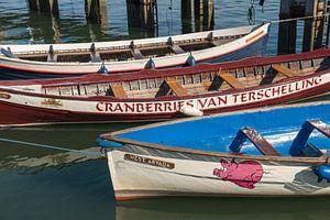 Kleurige roeiboten in een haven in Nederland