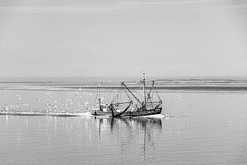 Garnalenkotter op de Waddenzee van Paul Veen