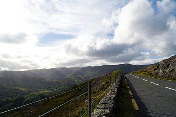 Old Kenmare Road,Ierland van Tess van Tilburg